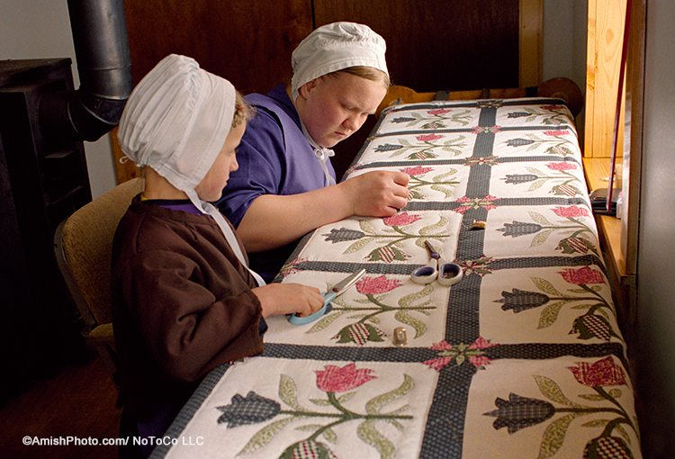 Buy Amish Quilts in Lancaster County, PA