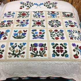 Sampler Applique Quilt - King - Family Farm Handcrafts